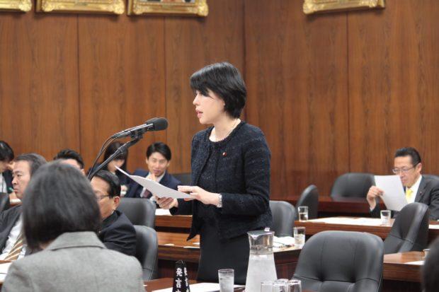 法務委員会での質疑 「裁判官定員法」