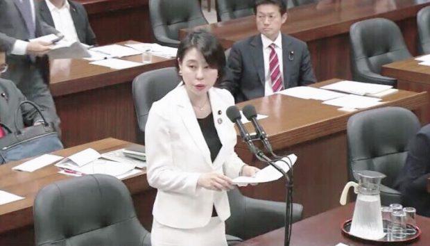 法務委員会で質疑を行いました。