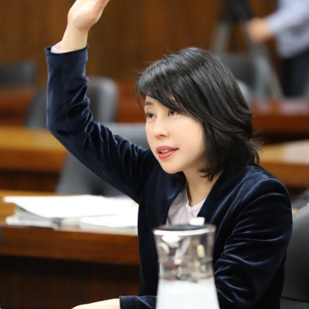 衆議院予算委員会第7分科会で質問しました。