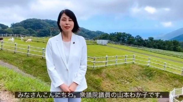 【動画】京丹後市丹後町、碇高原牧場は日本海が見える空気のきれいな牧場です。