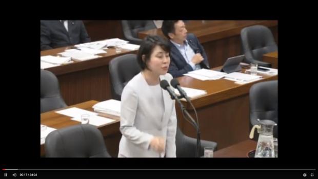 【動画】法務委員会で質問しました