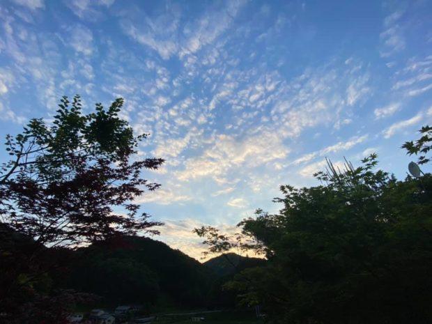 京都府のコロナに関する情報です。